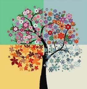 arbre de vie - hypnose : peur, stress, anxiété, blocages, troubles émotionnels